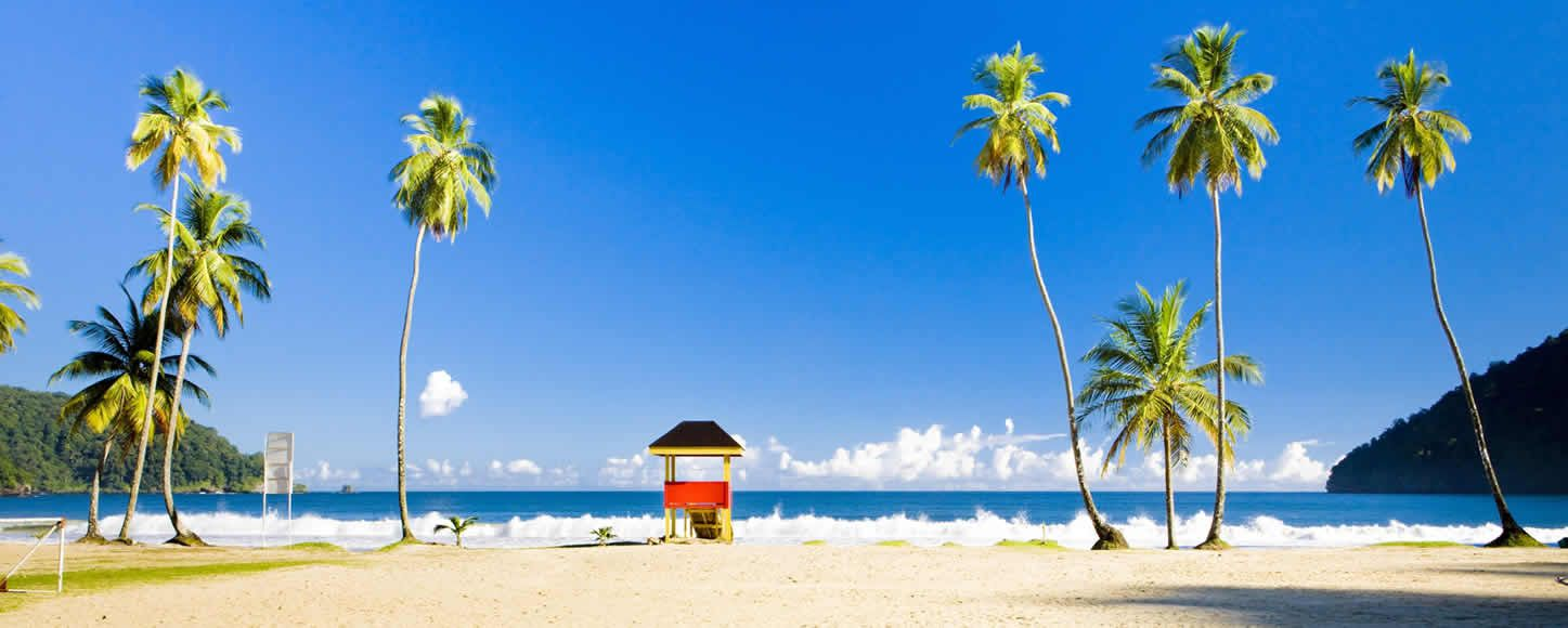 Tropical beach with palm trees and beach hut