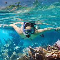 Explore underwater on your luxury vacation