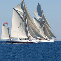 Sailing yachts in a Regatta